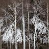 Manmade Snow, Stowe, 2011