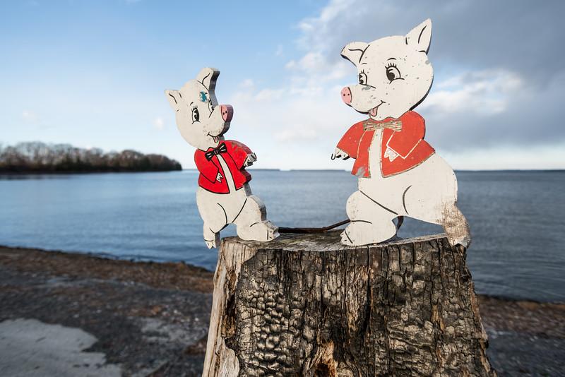 Pig Figures on Stump, Grand Isle, 2014