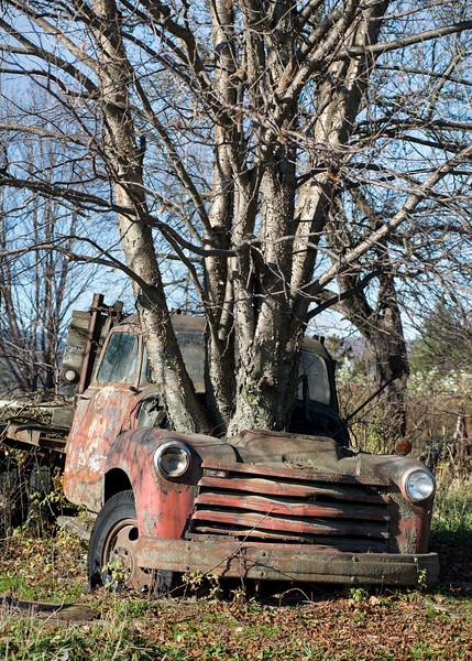Abandoned Farm Truck, Warren, 2014