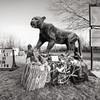 Catamount Sculpture, Bennington, 2014