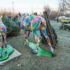 Christmas Tree Lot, Bennington, 2014