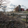 Farm, Danby, 2014