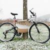 Bike for Sale, Stowe, 2014