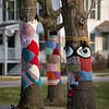 Fiber Art on Oak Trees, Manchester Center, 2017