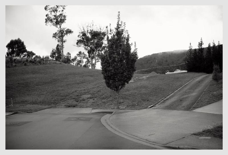 Picton 2013