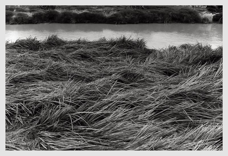 Makara River  06/20