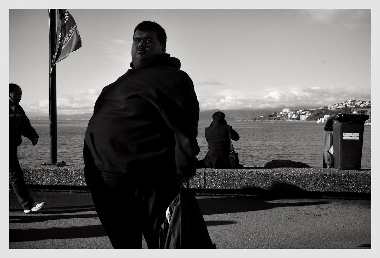 Wellington waterfront 2013