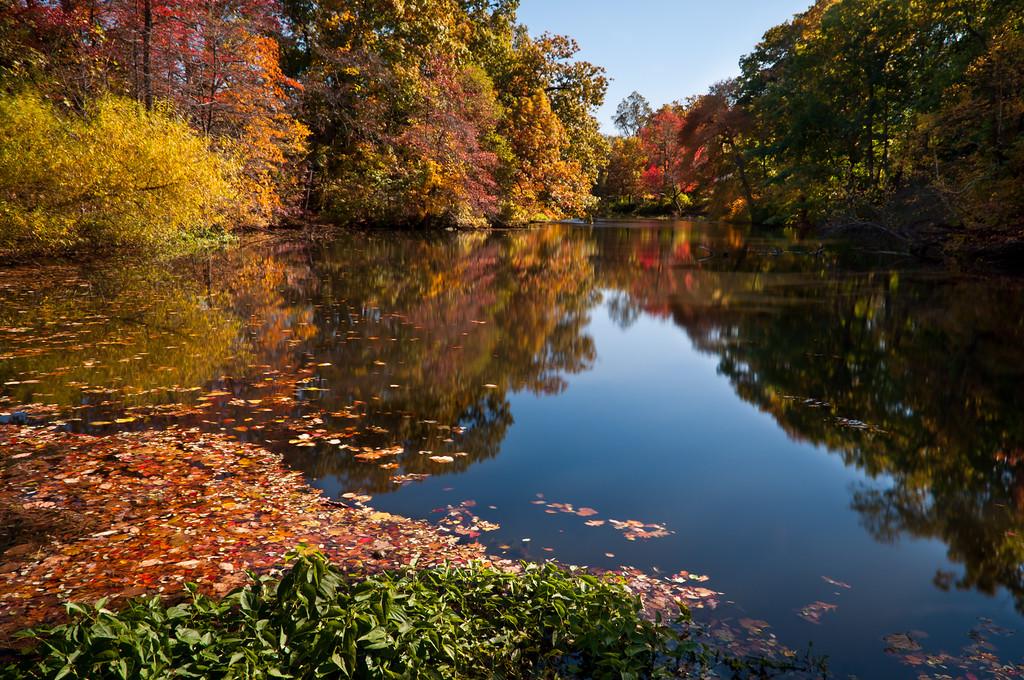 2011 10-28 Schwenker's Pond Mid-day-8