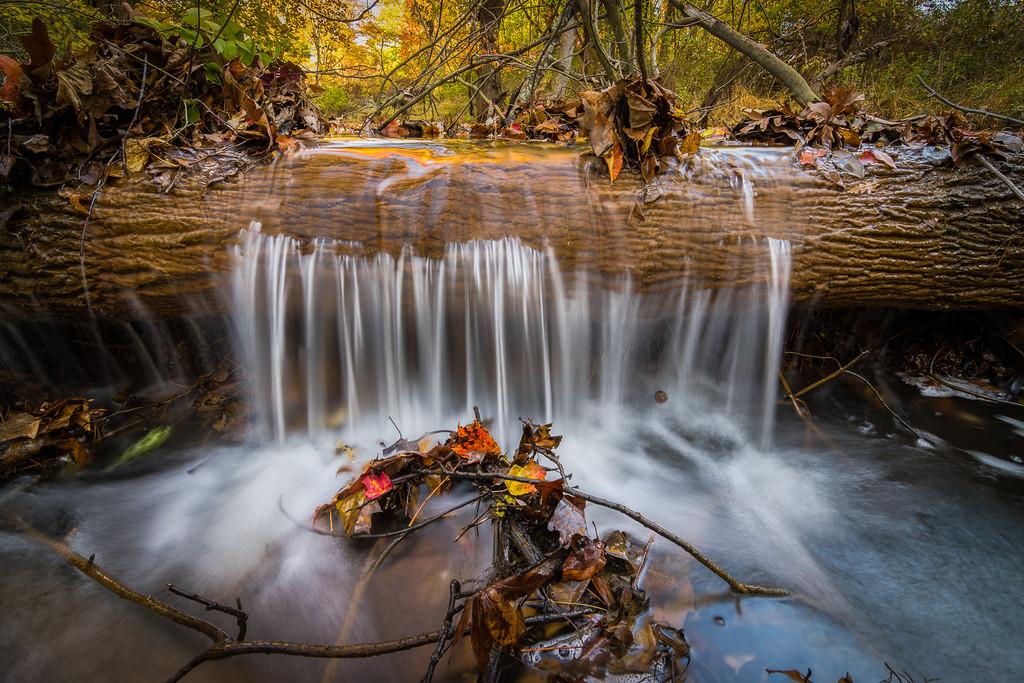 2016 11-4 Hockhockson Brook - Lucky Break-114_5_6__Full_Res