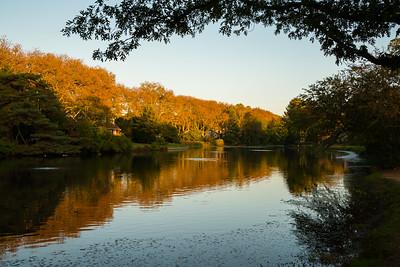 2017 10-14 McCarter Pond Fair Haven-1_Full_Res