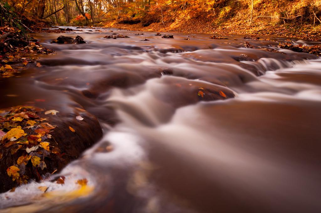 2011 11-11 Hockhockson Brook-18