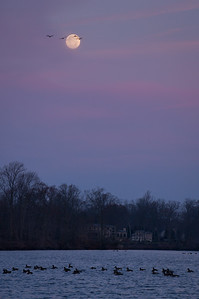 2012 11-29 Phalanx Reservoir Moon-122