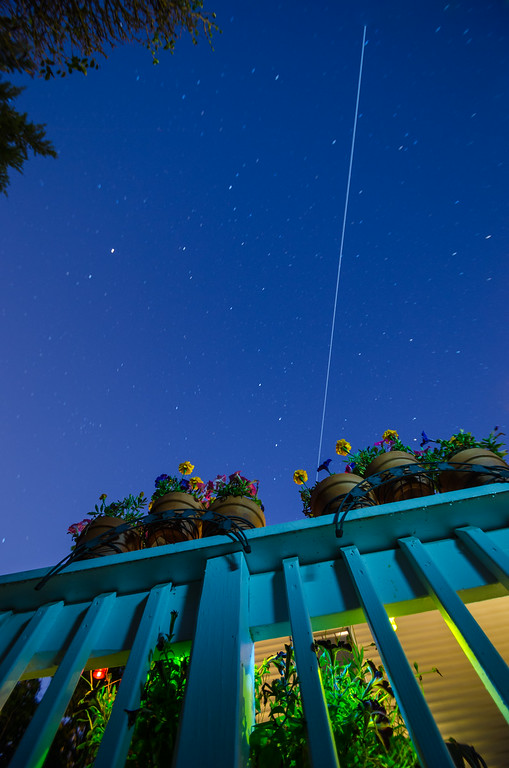 2014 6-19 ISS Flowers PoPo-2