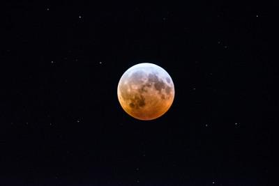 2019 1-20 Fair Haven Lunar Eclipse-100_Full_Res