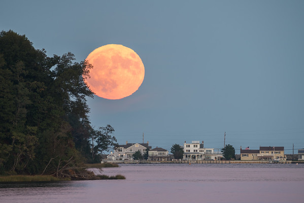 2016 10-15 Super Hunter's Moon Over Sea Bright and Rocky Point-40_Full_Res