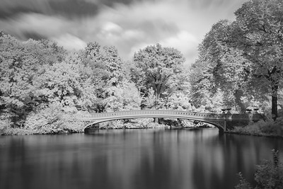 2018 10-10 NYC Central Park Infrared-61_Full_Res