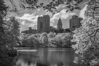 2018 10-10 NYC Central Park Infrared-52_Full_Res