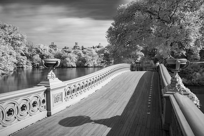 2018 10-10 NYC Central Park Infrared-58_Full_Res
