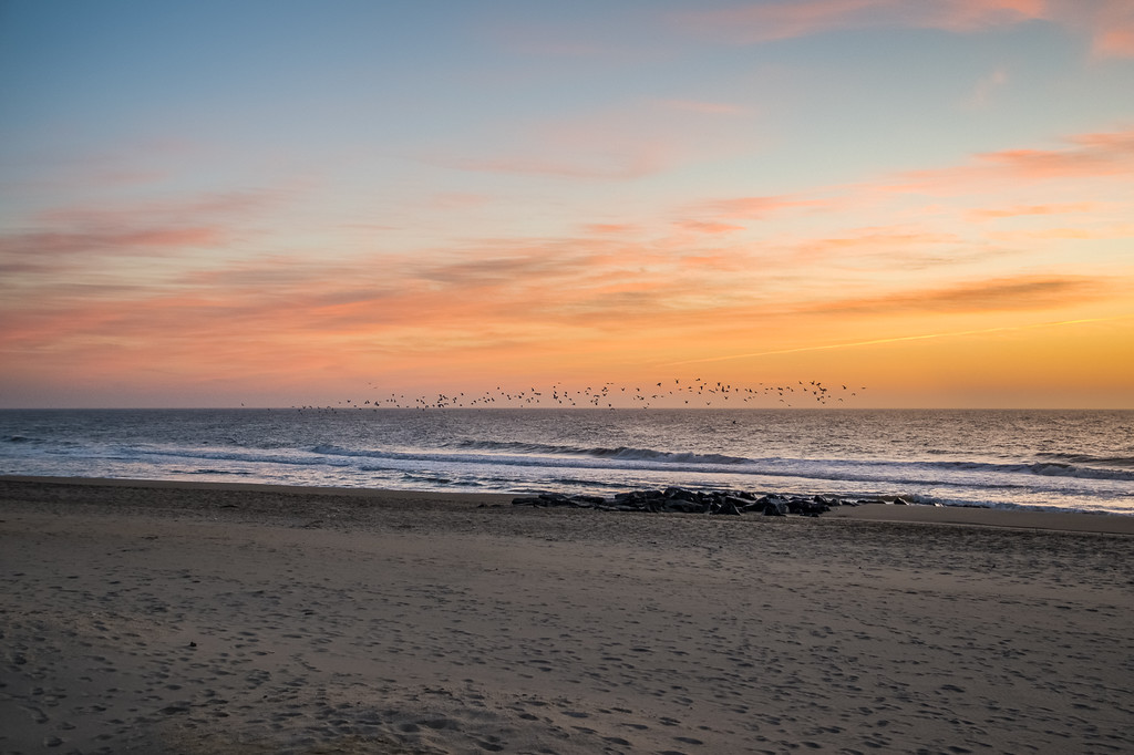2016 2-29 Long Branch Rooney's Seagulls Sunrise 1_Full_Res