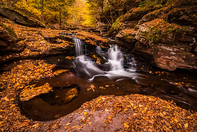 2020 10-18 Ricketts Glen State Park PA Waterfalls-255_Full_Res