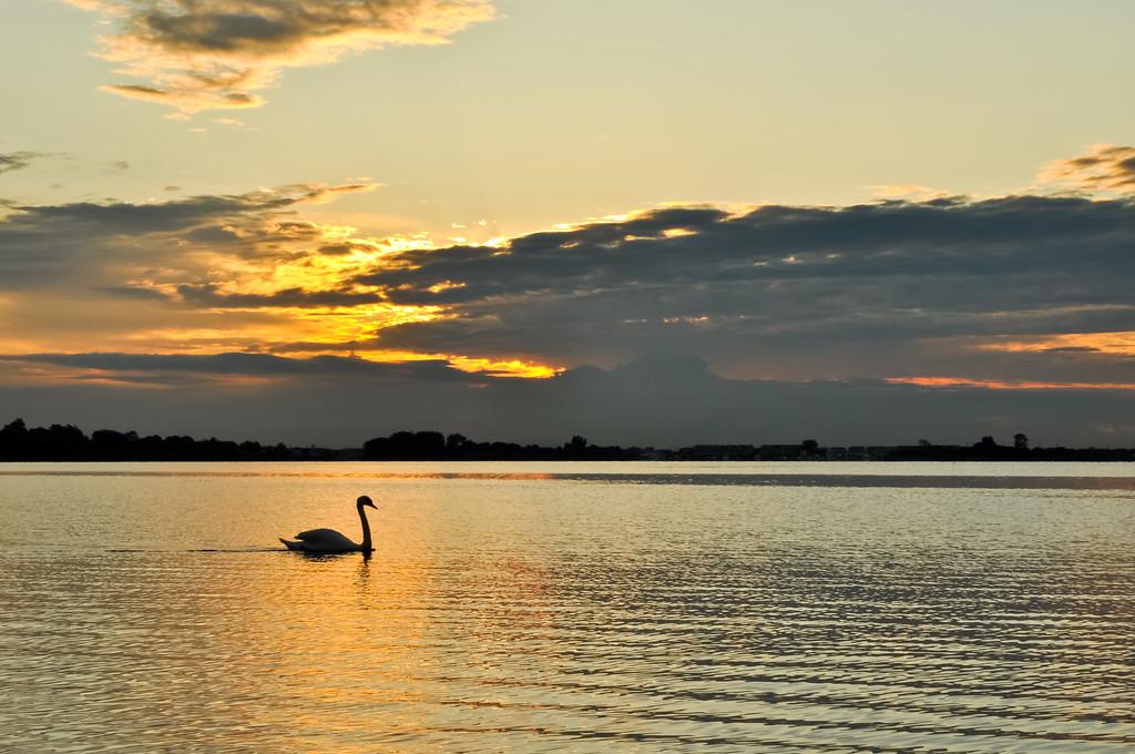 2011 6-14 Shrewsbury River