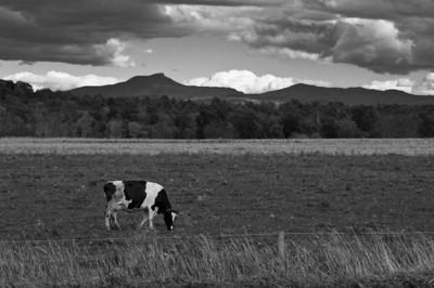 2012 9-24 Vermont Moss Glen Falls-123