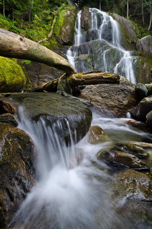 2013 8-29 Vermont Moss Glen Falls Granville, VT-45