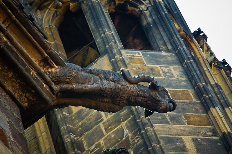 Gargoyal on St. Vitus Cathedral
