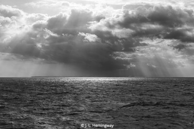 Following Storm