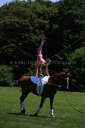 LI Horseman 5D 2009 115