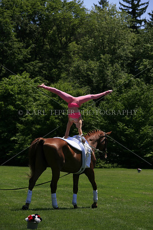 Annalise VanVranken.  Supurb Equestrian Vaulter who will be competing for the 2010 AllTech FEI WEG in Kentucky!