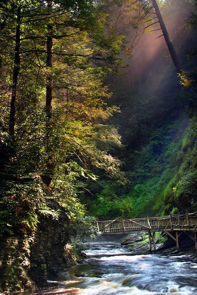 Bushkill Falls, Pa. at Sunrise