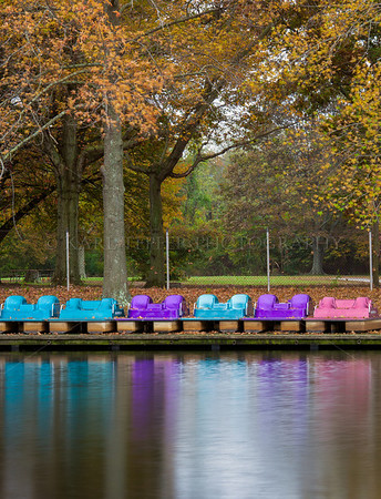 "Colorful paddle Boats safely ""ashore"" for the winter. Fall colors emerging in Belmont Lake State Park,  Babylon, New York"