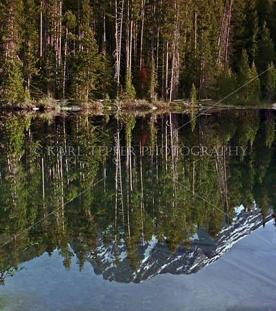Jackson Lake reflection