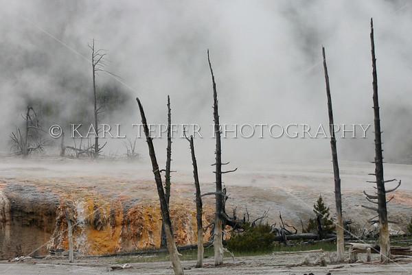 Yellowstone<br /> © 2009 Karl Tepfer