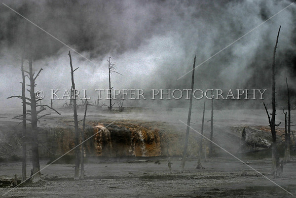 Yellowstone National Park<br /> © 2009 Karl Tepfer