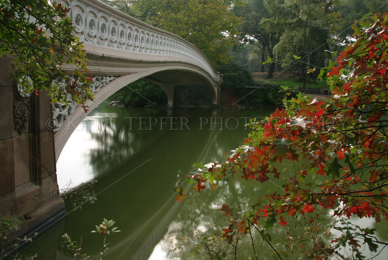 Bow Bridge. Central Park, Manhattan, New York City in the summer