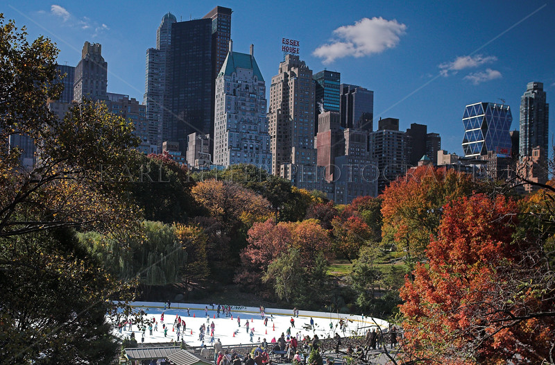 Central Park, Manhattan, New York City in the winter.  Wollman Rink