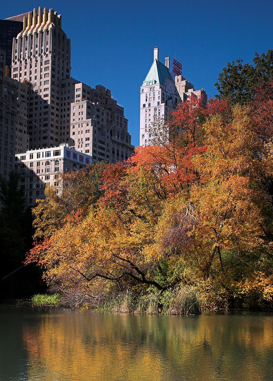 Central Park, Manhattan, New York City in the fall
