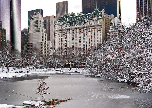 Central Park, Manhattan, New York City in the winter. Plaza Hotel in the background.