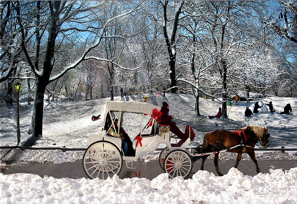 "Central Park, Manhattan, New York City in the winter. To post YOUR photo's online and set up your own galleries, simply click here:SMUGMUG then click on ""Free Trial"" and receive a $5.00 discount when you sign on!  You can try it out for free for two weeks."