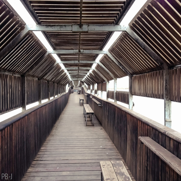 Wooden Bridge on a Cloudy Day