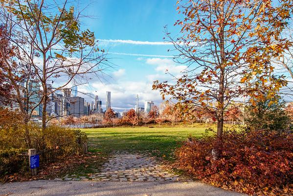 A Park in Brooklyn