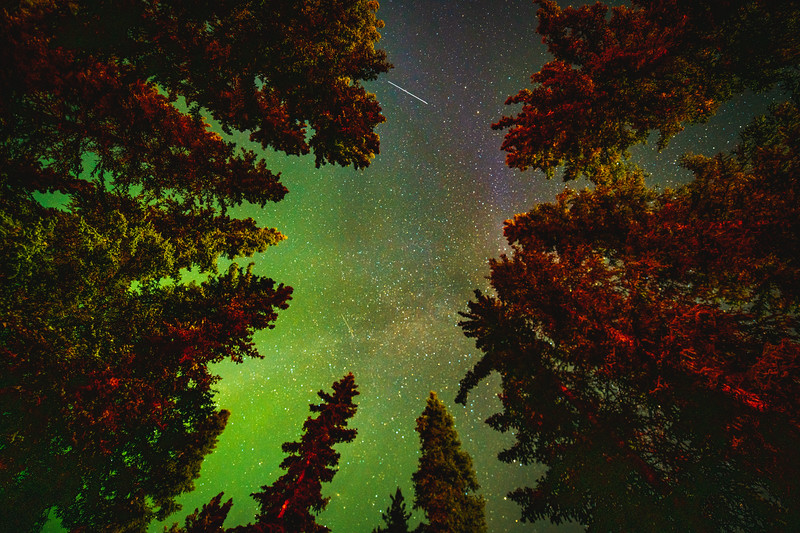 Looking Up at the Aurora Borealis
