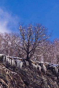 Valle-Maggia-in-Snow-77