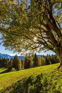 2014-10-31-Appenzell-Zurich-58