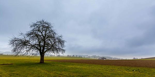 2014-02-02-Hochdorf-23
