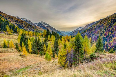 2015-10-24 Autumn in Valley Maggia-493-Edit_fused-2