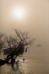 2013-03-09-Lungolago-Minusio-247
