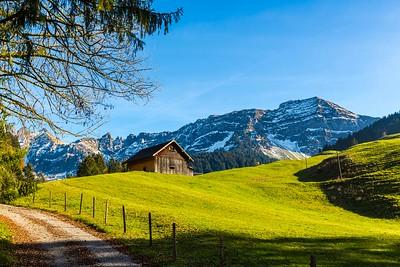 2014-10-31-Appenzell-Zurich-106
